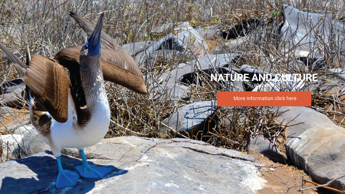Galapagos-Nature-and-Culture