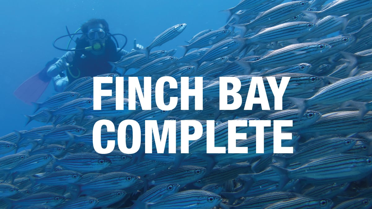 Finch Bay Eco Hotel - Finch Bay Complete