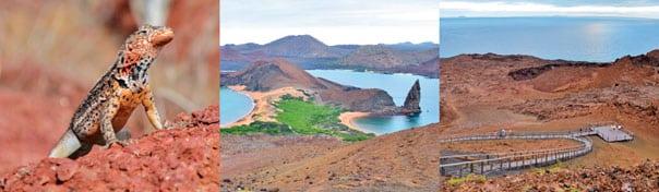 northern bartolome island