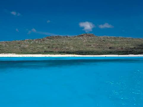cruising to the Galapagos Islands