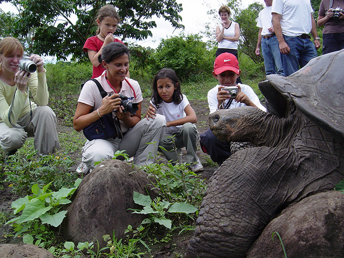 Giant tortoise with a guest.