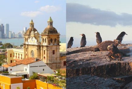 Galapagos and Colombia Tour