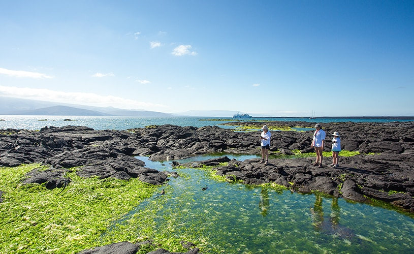 The Best Galapagos Deal of 2017!