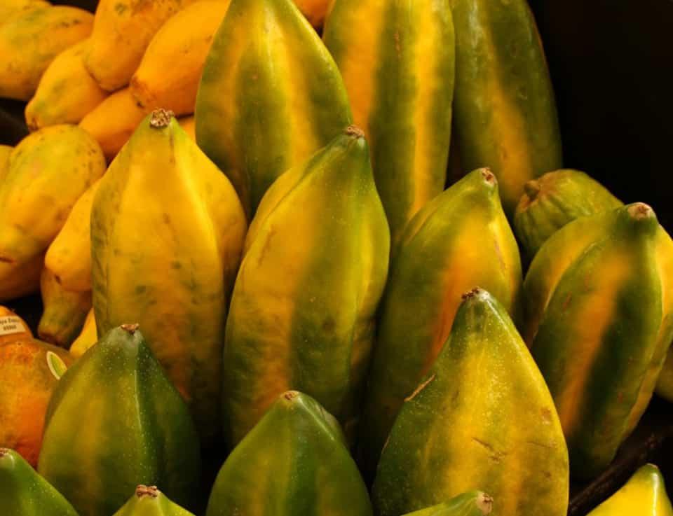 Babaco fruit in Ecuador.