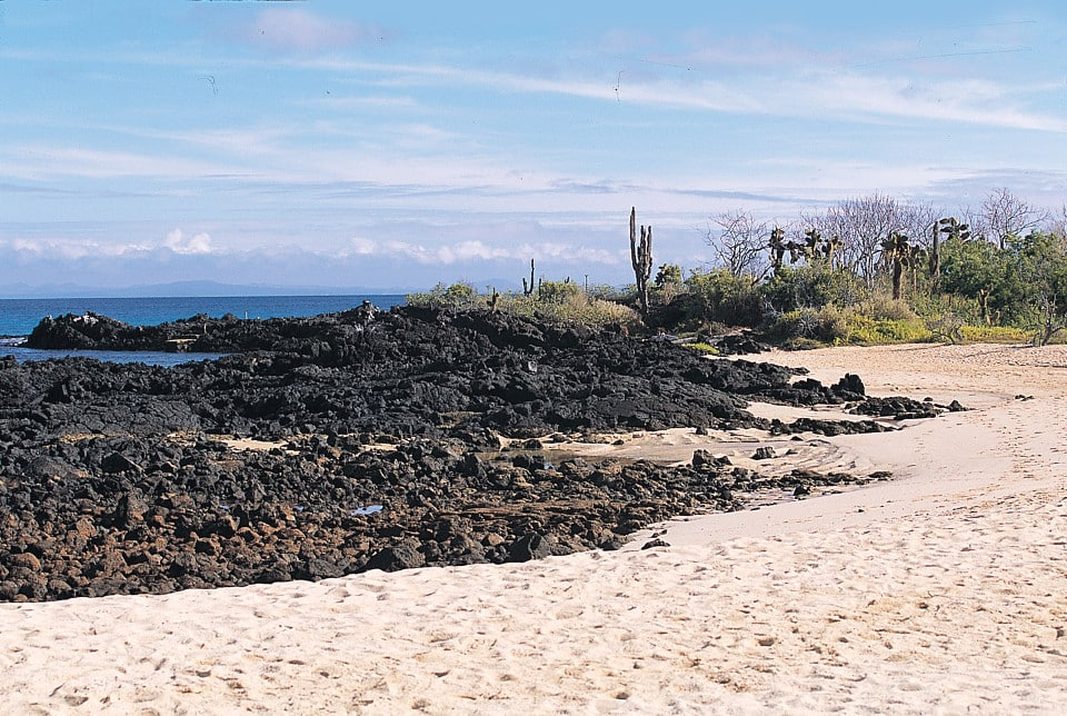 The Galapagos Islands beach landscape.