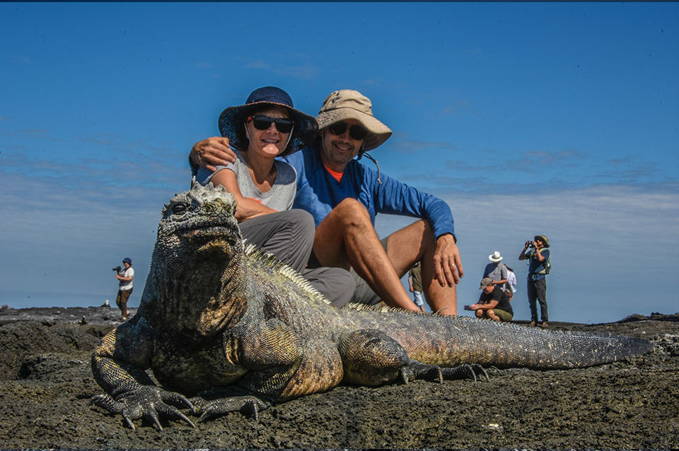 A couple encounter with a Galapagos marine iguana in the archipelago.
