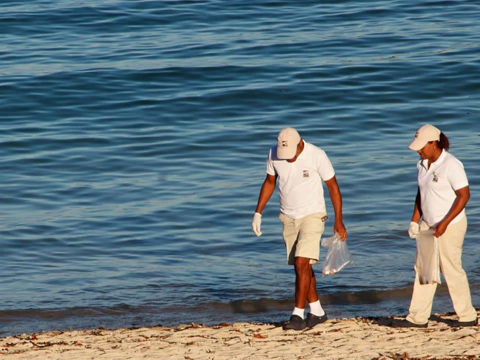 Volunteers cleaning the beach.