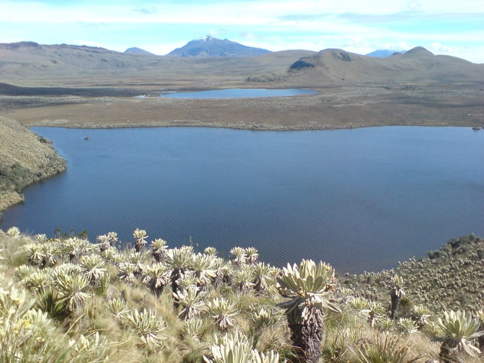 El Angel Ecological Reserve. Photo credit: http://kallpamunay.blogspot.com