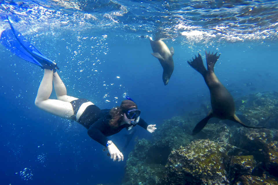 Activities in the Galapagos islands