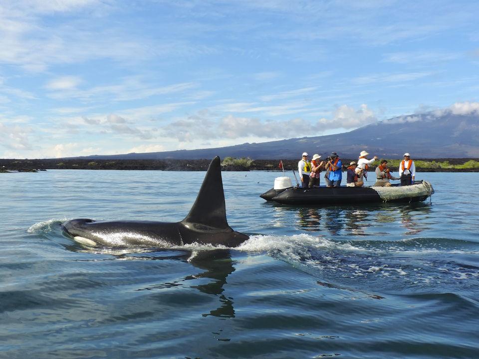 adventure vacation in galapagos