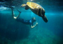 snorkeling-galapagos