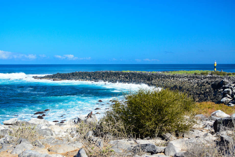 Galapagos Espanola Island.