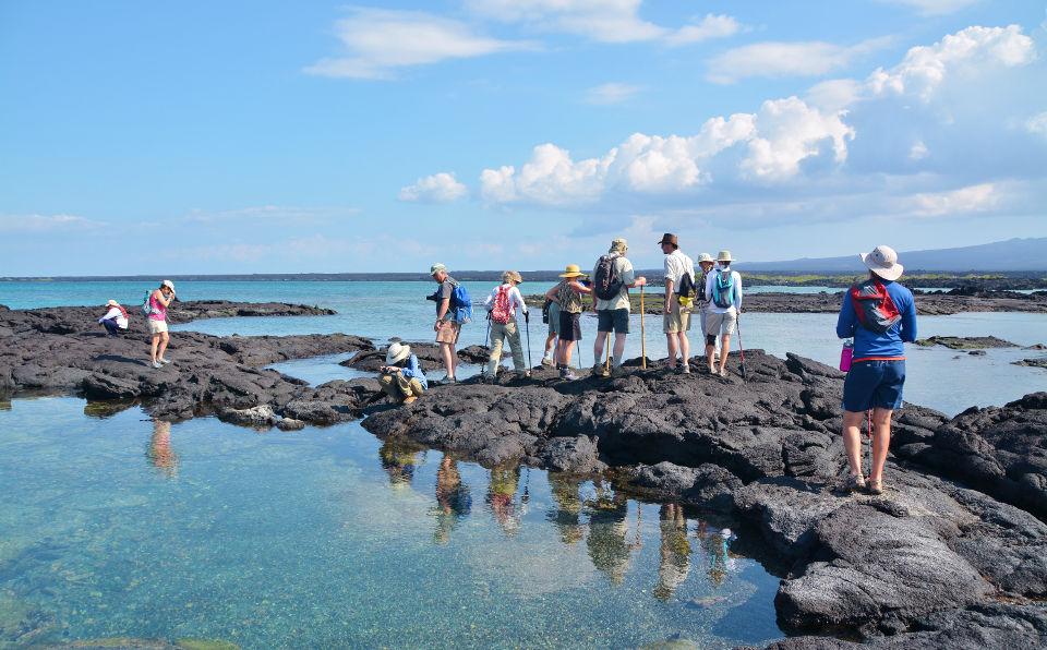 Guests hiking in Fernandina island.