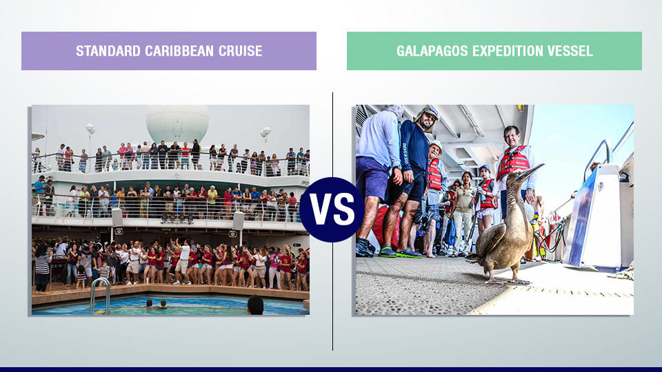 Caribbean vs Galapagos cruise trip.