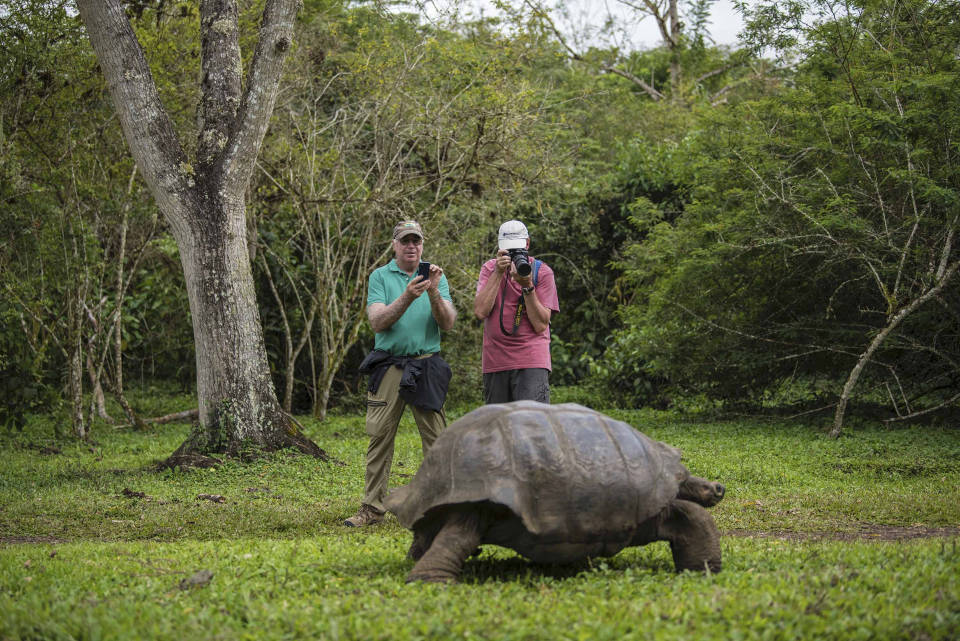 Guests with Galapagos giant tortoise.