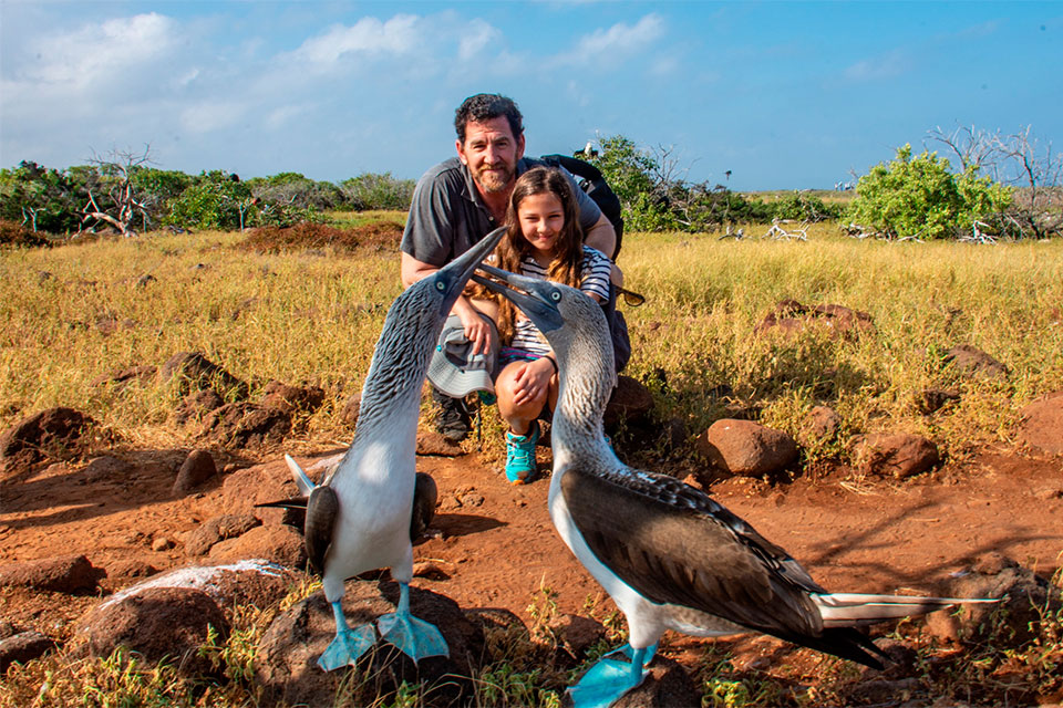 Blue-footed boobies and a family