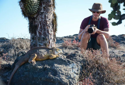 Guest encounter with a land iguana in the Galapagos Islands.