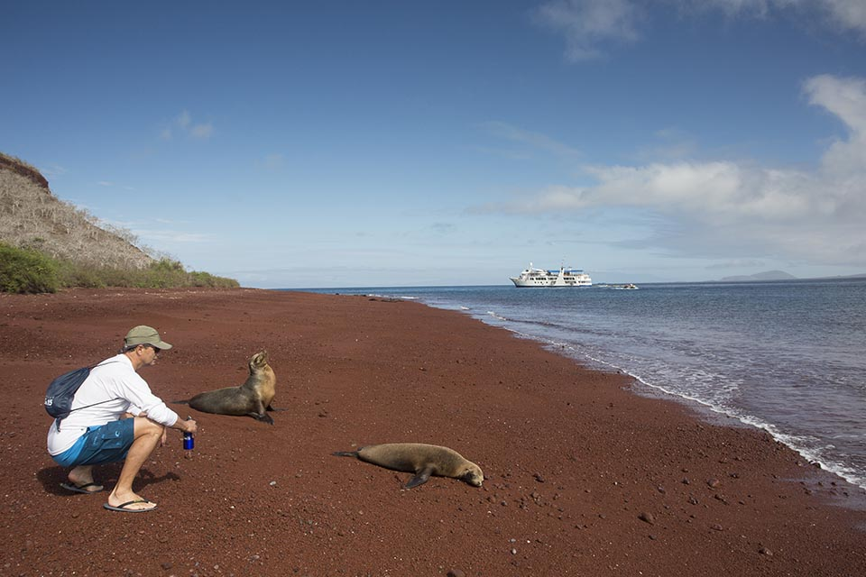 Guest keeping a respectful distance from a Galapagos Sea Lion.