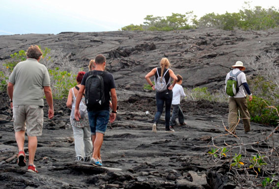 Guests visiting a lava field.