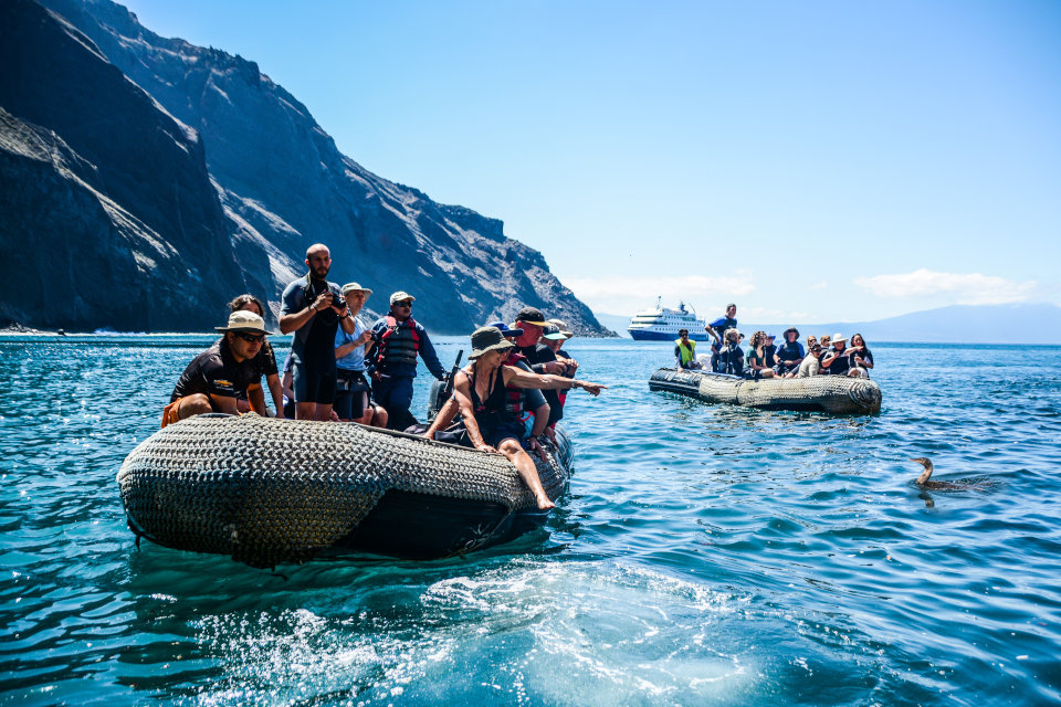 Galapagos coastal exploration next year.