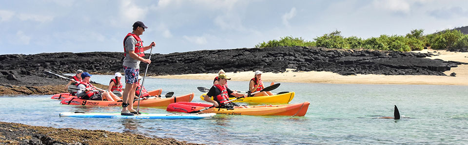 How to Choose the Best Galapagos Cruise? 3 Simple Tips