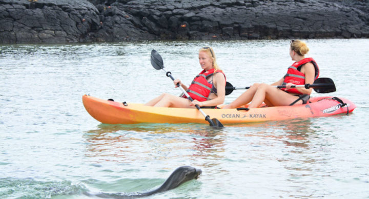 Guests kayaking in the Galapagos Islands.