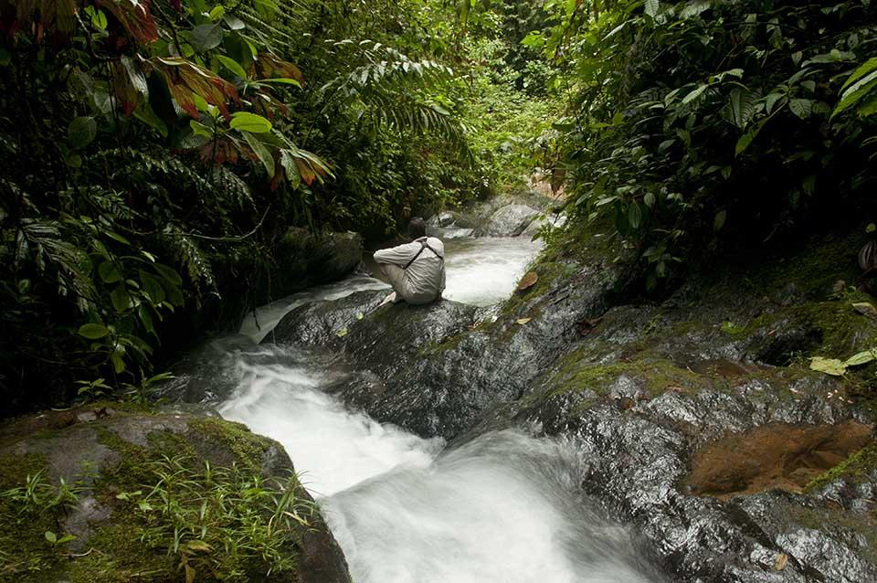 Solo traveler tour - Galapagos and Ecuador deals