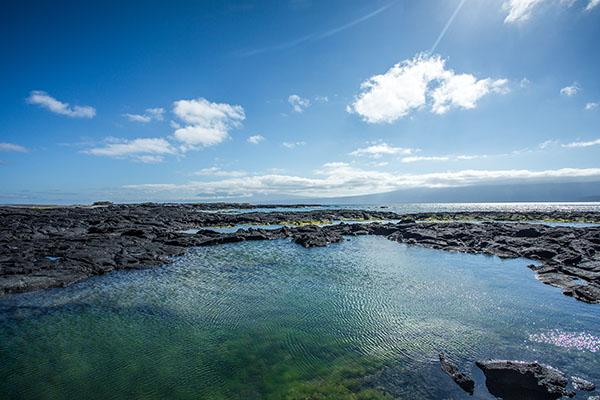 Fernandina Island: Best Galapagos Cruise Itinerary