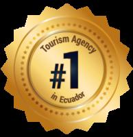 mt-web-medallas-4-mm