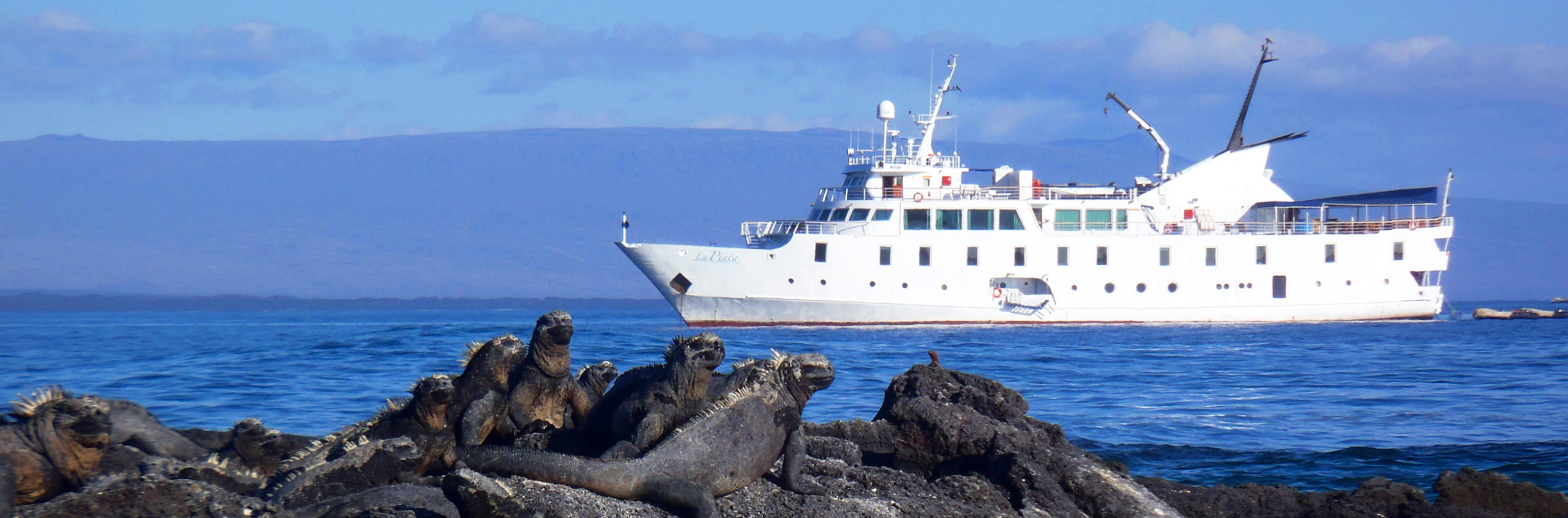 The Galapagos Islands aboard Yacht La Pinta - Activities - Wildlife - Islands