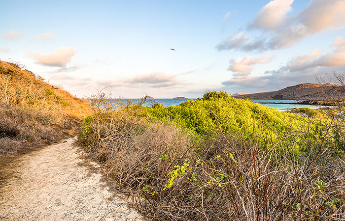 Best time to go to Galapagos: Floreana Island