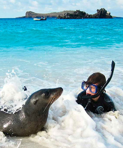 Best time to go to Galapagos: Snorkeling