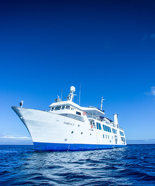Best time to go to Galapagos: Yacht Isabela II