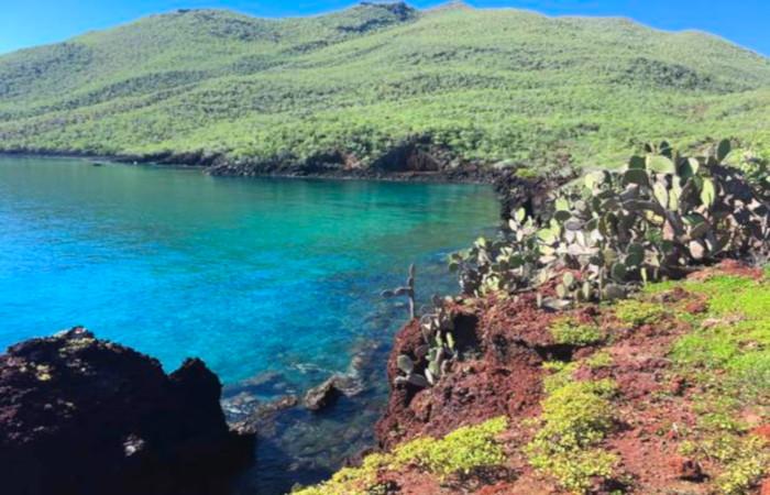 Hot Season in the Galapagos Coastline