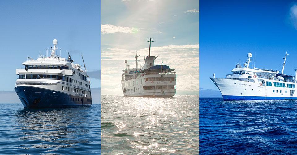 Metropolitan touring vessels.