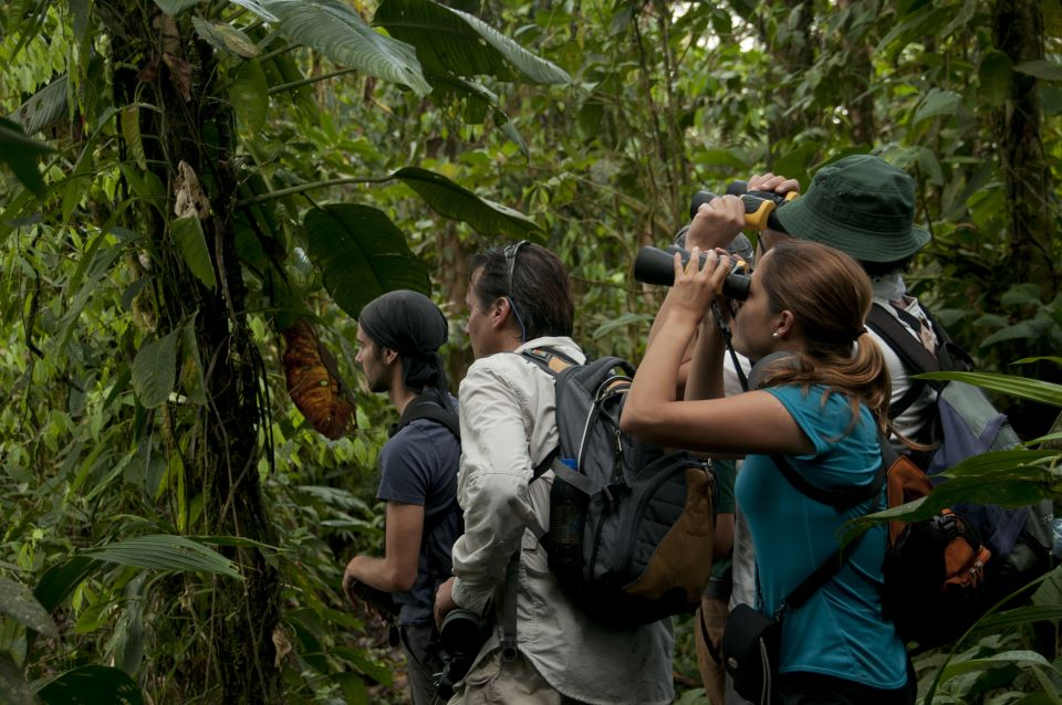 Guests observing the wildlife in Mashpi Reserve.