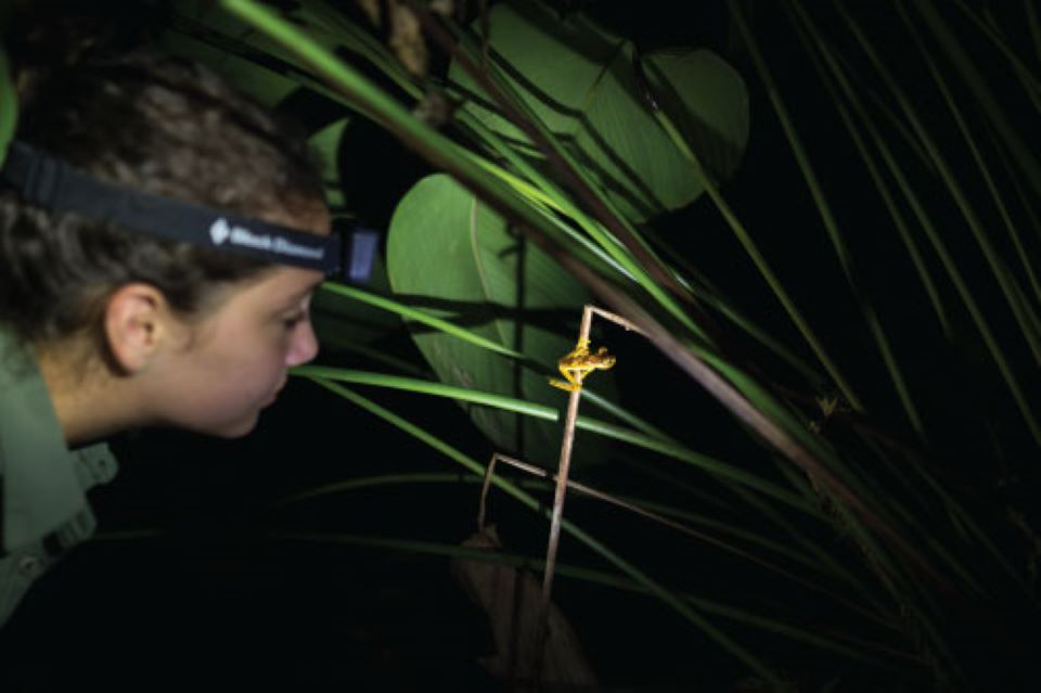 Mashpi Lodge guest on a night observation.