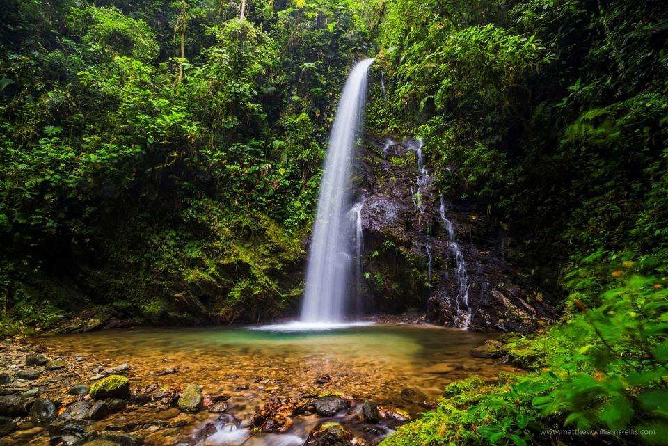 San Vicente waterfall in Mashpi Reserve.