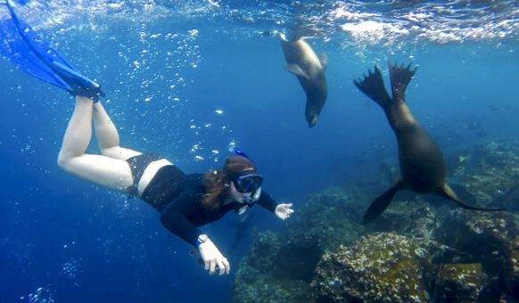 Snorkeling is one of the activities included in Santa Cruz II itineraries.