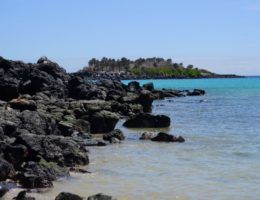 Santa Fe Island.