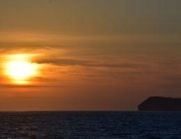 Seymour Island.