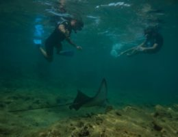 Snorkeling in Bartolome Island.