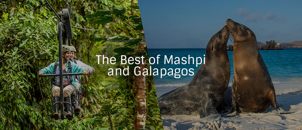 Mashpi Lodge and Galapagos tour package