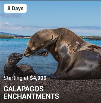 Galapagos Enchantments Package