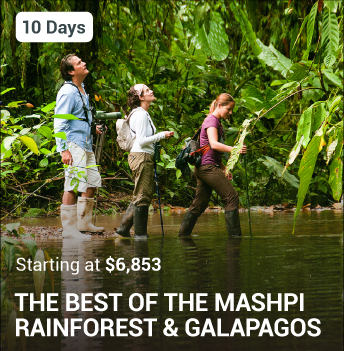 Mashpi Rainforest and Galapagos Package