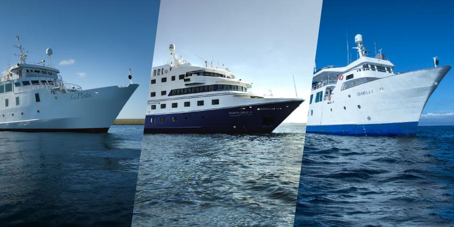 Metropolitan Touring's fleet