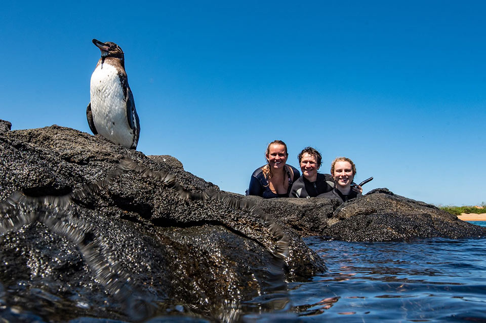 Penguin and a family in Bartolome Island, Galapagos