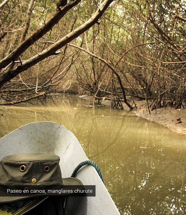 Paseso en canoa en los manglares de Churute.