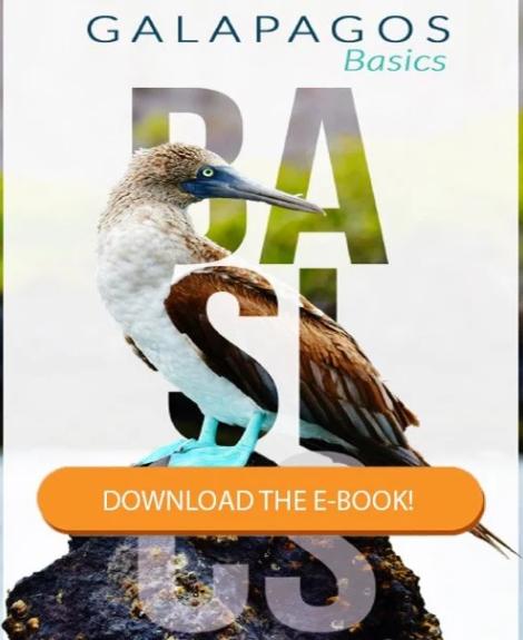 Download our galapagos basics ebook