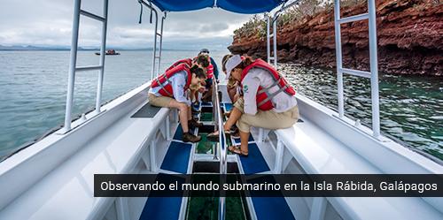 Bote de fondo de vidrio en Galápagos.